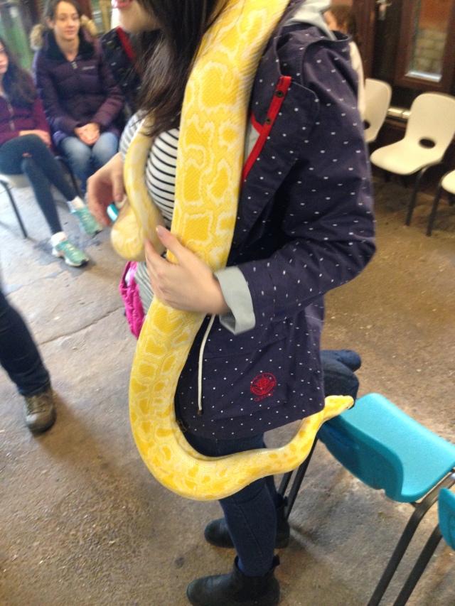 whitehouse farm python